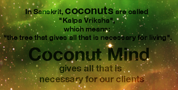 Coconut Mind Creative Agency Artistic Director Jakarta Indonesia